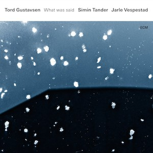 Gustavsen Tander Vespestad-What Was Said Vinyl