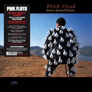 Pink Floyd-Delicate Sound Of Thunder 2017 Vinyl